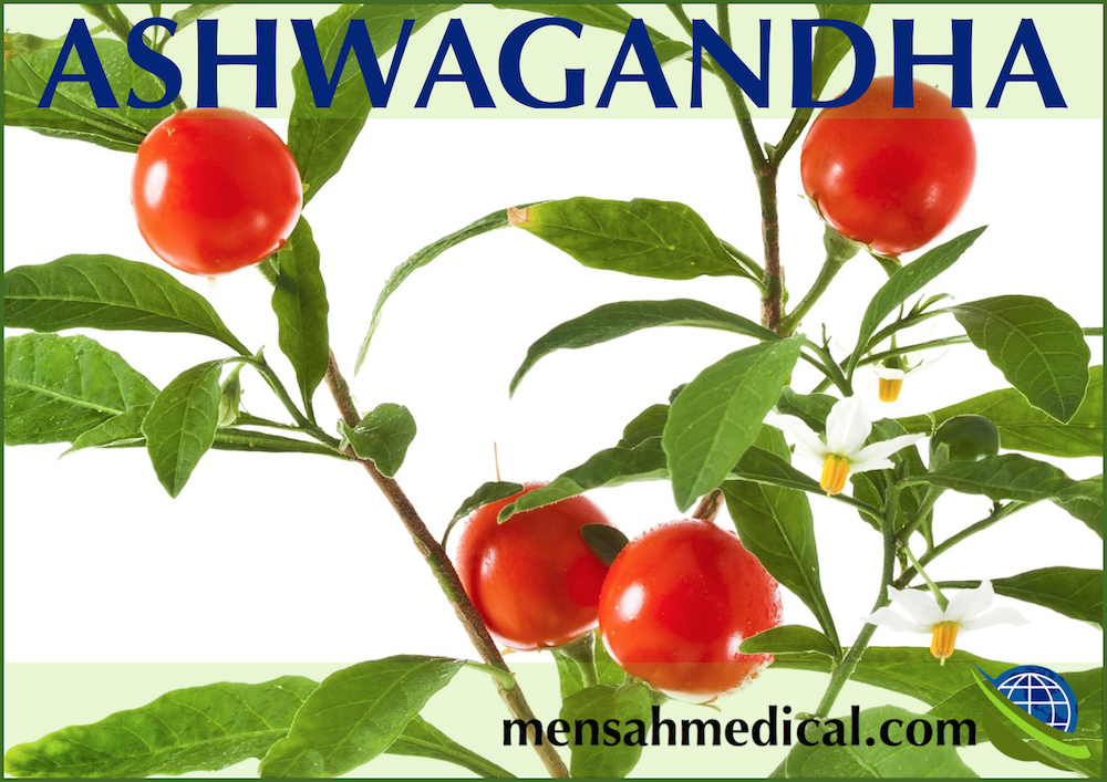 Ashwagandha Dangers: This Herbal Remedy may have Repercussions